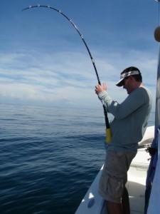gulf-fishing 8003320132 o